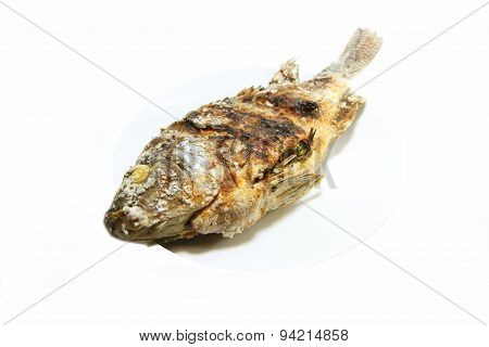 Fish grilled with salt