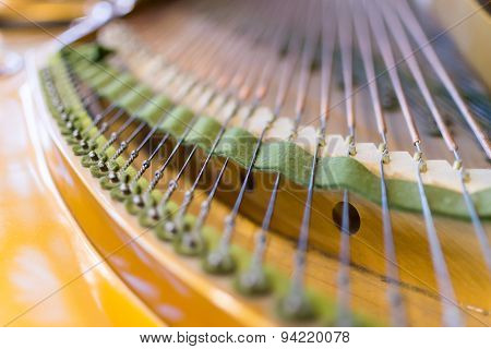 Grand Piano Strings In Closeup
