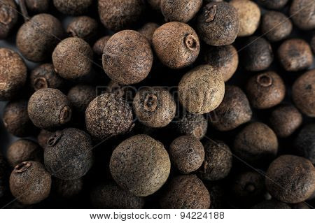 Black pepper seed on a white background