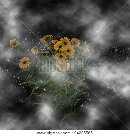 Mysterious Sunflowers Behind The Clouds