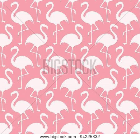 Flamingo. Pattern