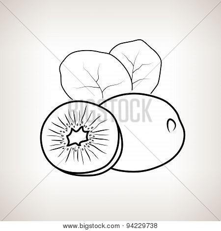 Kiwifruit In The Contours