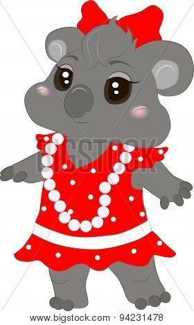 Koala baby girl