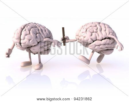 Relay Between Brains