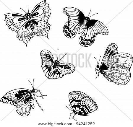 graphic image of exotic butterflies in cartoon style