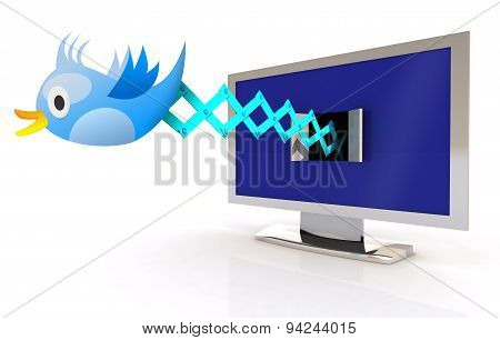 Blue Bird Cuckoo Tweets And Sings On Television