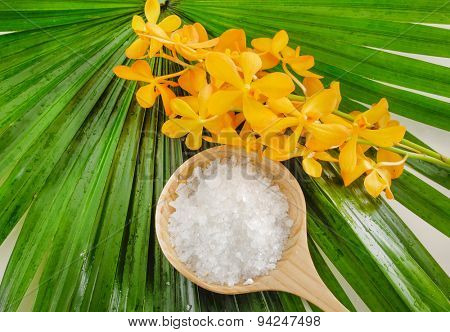 Branch orchid and salt in spoon on palm leaf