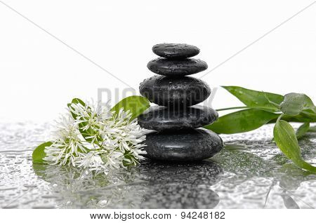 Still life with wet stacked stones with bamboo, white flower