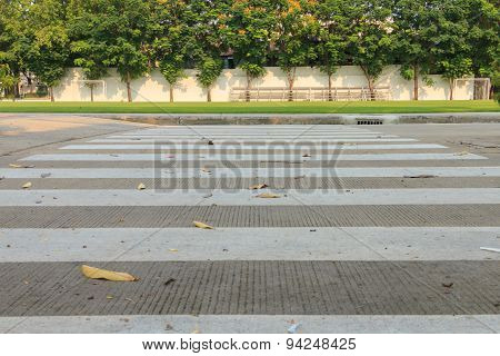 Zebra Walkway Crossing
