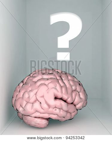 Brain Room And Question Mark