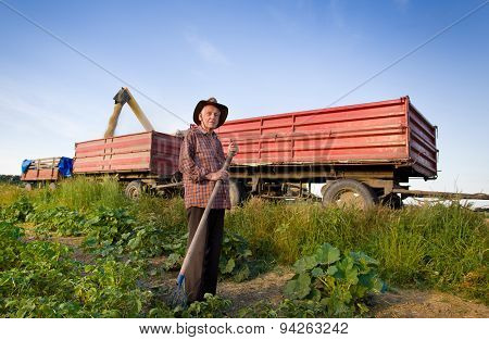 Senior Farmer At Corn Harvest
