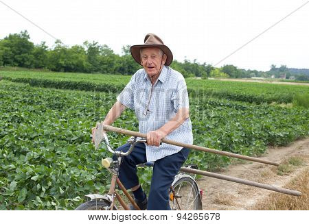 Senior Farmer Riding A Bike