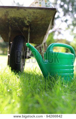 Gardening hobby and passion