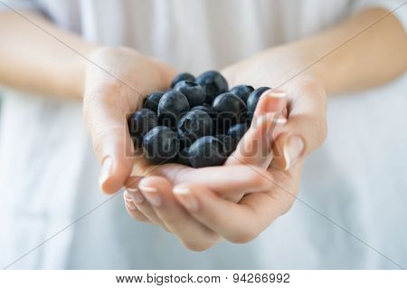 Closeup shot of a woman holding fresh blueberries. Closeup of a girl's hands holding a handful of black raspberry fruit. Shallow depth of field with focus on blueberry fruit.
