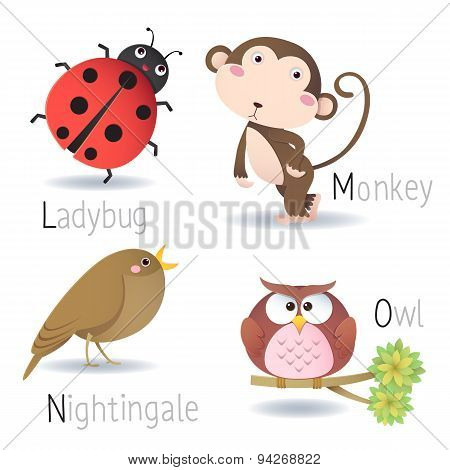 Alphabet With Animals From L To O