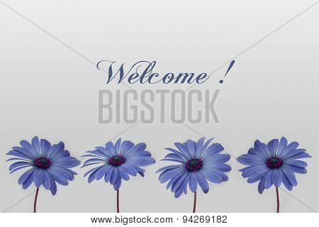welcome text and flower decoration floral design