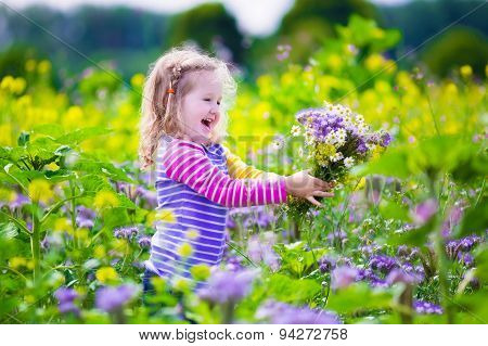 Little Girl Picking Wild Flowers In A Field