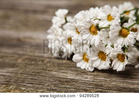 Close up of daisies on wooden background.