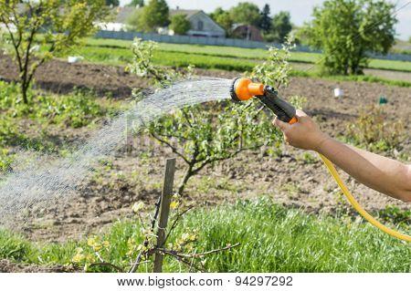 Watering Water From A Hose Garden Flowers