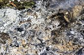 picture of ashes  - Ashes from lumber on fire and smoke - JPG