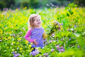 foto of country girl  - Child picking wild flowers in field - JPG