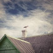 foto of stork  - Stork standing on a chimney of old house with a tiled roof - JPG