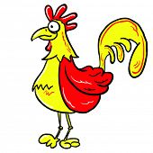 foto of roosters  - rooster cartoon illustration - JPG