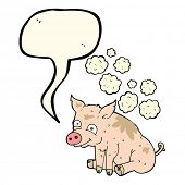 stock photo of smelly  - cartoon smelly pig with speech bubble - JPG