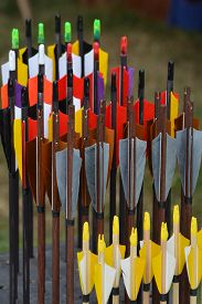 stock photo of fletching  - Beautiful colored arrows waiting to get shot at the target - JPG