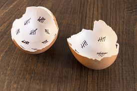 foto of cross-hatch  - Egg shells shown lying on a wooden background with marks inside counting down the days till hatching - JPG
