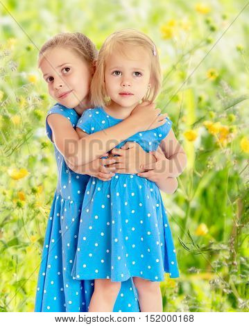 Two charming little girls, sisters , in identical blue dresses with polka dots , cuddling.On the background of green grass. The concept of a family holiday.