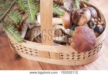 Mushrooms in basket on wooden background. Healthy eating.