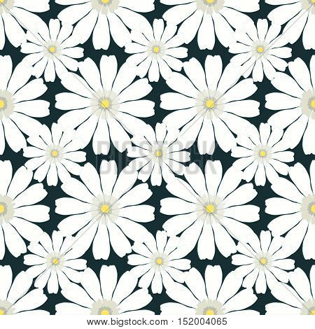 Seamless Pattern With Camomile On Dark Background. Vector Illustration