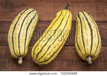 delicata winter squash against rustic red painted wood barn table
