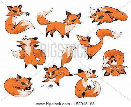 Set of cartoon cute foxes in different poses icons isolated on white background. Vector eps 10 format