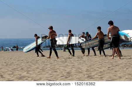 Venice Beach, California, 10/15/16--Surfing instructor leads group of surfer beginners with surfboards and wetsuits to the ocean to get some waves.