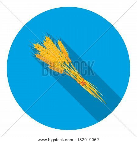 Bundle of wheat icon in flat style isolated on white background. Canadian Thanksgiving Day symbol vector illustration.