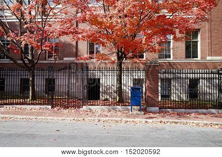 autumn Boston. red brick building, black iron fence, red maple and a blue mailbox on a street in Cambridge, Boston