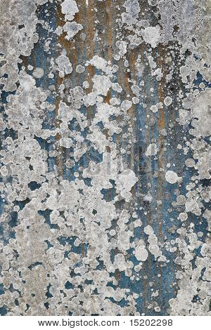 A photography of an old stone with lichen