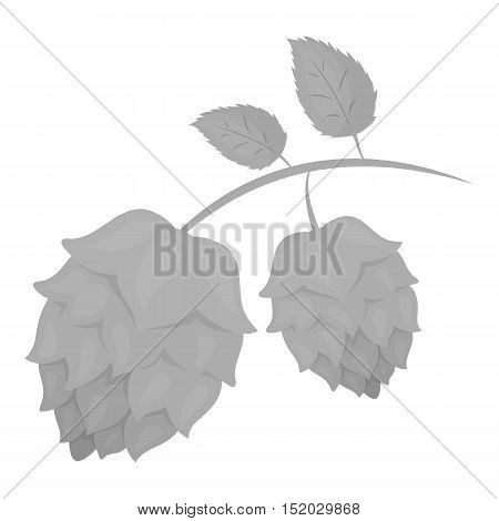 Hops icon in monochrome style isolated on white background. Oktoberfest symbol vector illustration.