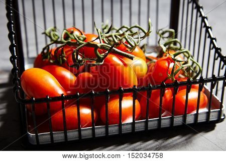 Fresh, juicy, ripe cherry tomatoes on branch in iron basket on gray background. Cherry tomatoes to decorate the finished dish, pickle or dry. Directional light, selective focus, space for text