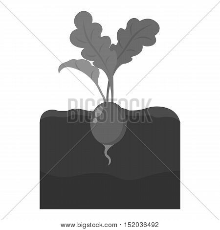 Radish icon monochrome. Single plant icon from the big farm, garden, agriculture monochrome.