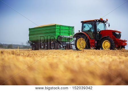 Farmer Driving Agricultural Tractor And Trailer Full Of Grain