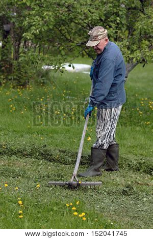 man collects grass with rakes in village outdoor