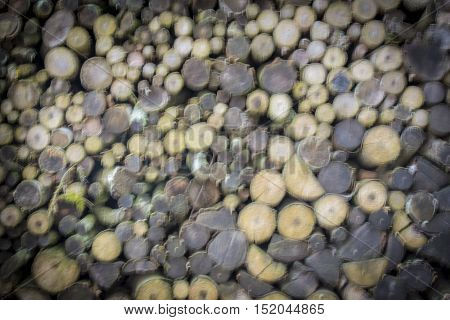 Firewoods stack blurry background - Abstract background with a stack of firewood logs prepared for winter with blurry settings great composition for your design