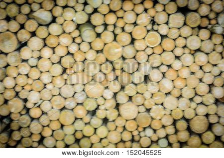 Tree logs blurry background - Wooden abstract background with a stack of round firewoods prepared for winter