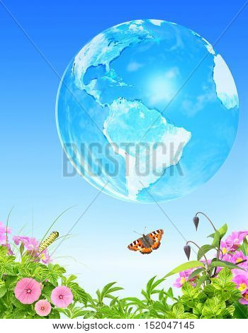 Summer grass, flowers insect and Earth on blue sky background. Elements of this image furnished by NASA