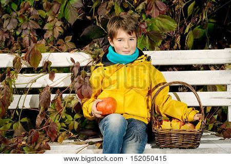A boy sitting on a bench with a basket of red apples and pumpkin in a beautiful autumn park. Children's fashion.