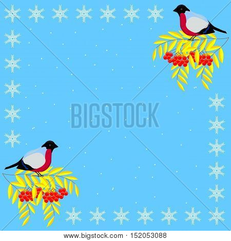 Christmas and New Year frame of the branches of mountain ash, bullfinches and snowflakes on a background of snow
