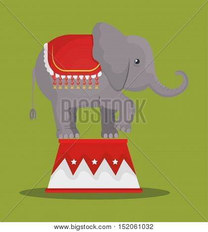 circus elephant festival show over green background. vector illustration